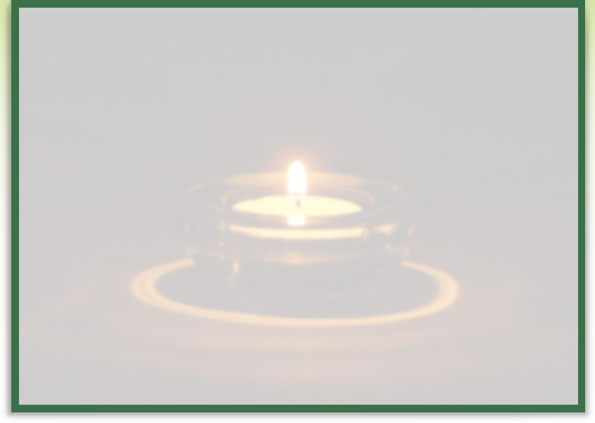 Wellness Candles - Order real soy candles online