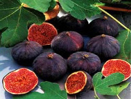 Christmas / Holiday: Holiday Fig and Spice